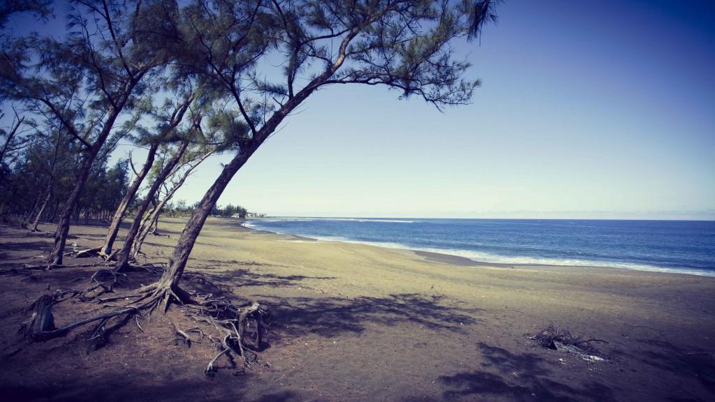 Île de la Réunion Etang salé