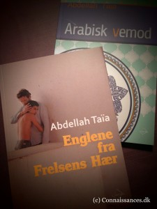 Abdellah_Taïa_20160302 1