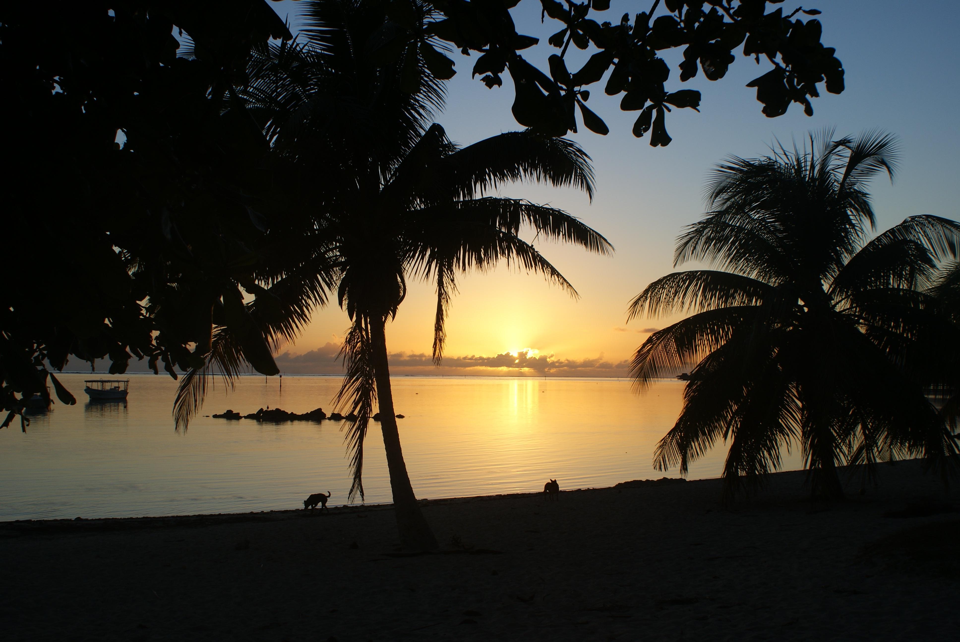 Polynésie française solnedgang