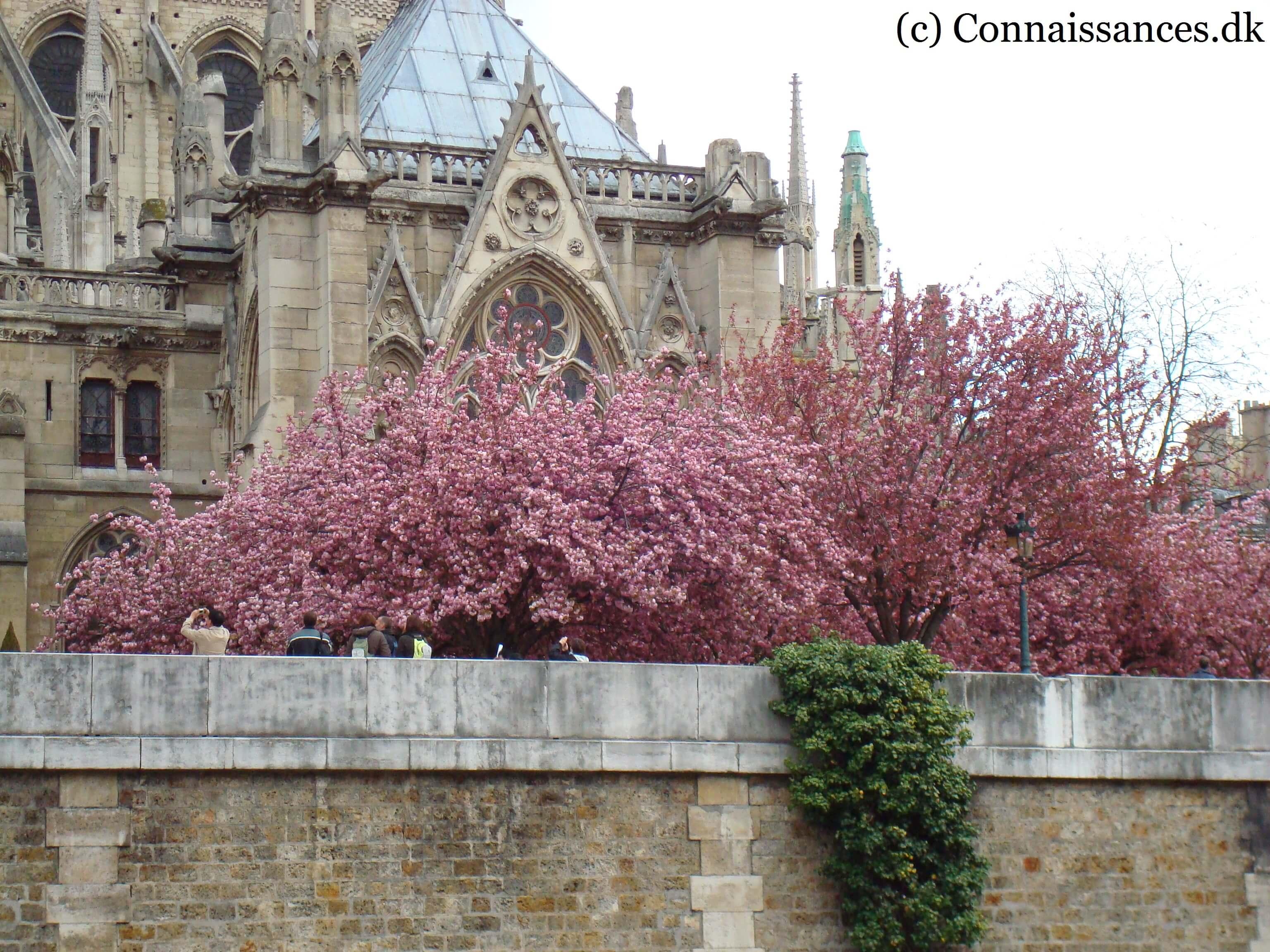 Fransk forår